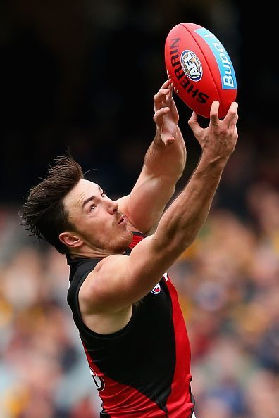 during the round 13 AFL match between the Hawthorn Hawks and the Essendon Bombers at Melbourne Cricket Ground on June 27, 2015 in Melbourne, Australia.