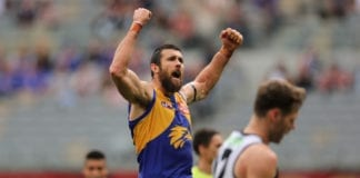 AFL Rd 8 - West Coast v Collingwood